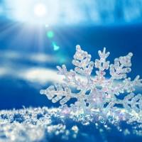 Выбираем одежду и аксессуары c изображениями снежинки>