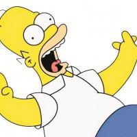 Выбираем одежду и аксессуары c изображениями Гомера>