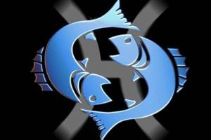 Обзор одежды и аксессуаров с изображениями Рыбы