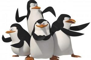 Обзор одежды и аксессуаров с изображениями пингвина