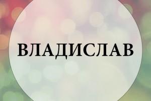 Обзор одежды и аксессуаров с принтами Владислав
